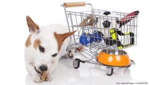 hund neben mini einfkaufwagen