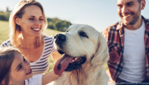 familienhund hund mit seiner familie